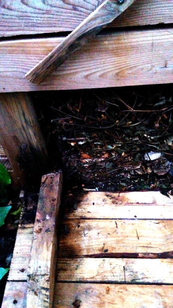 Trampilla inferior de la compostera de palets.