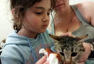 Paulina curando gato recogido