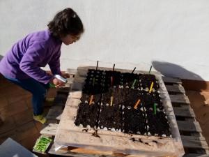 Mi hija ayudando a cuidar y regar los semilleros