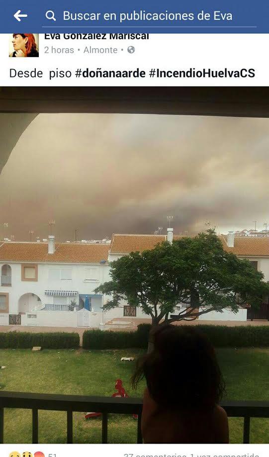 Columnas de humo del incendio de Doñana